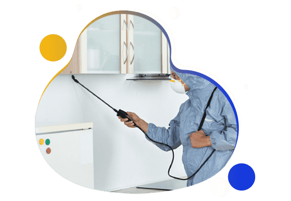 Affordable Pest Control Southern River